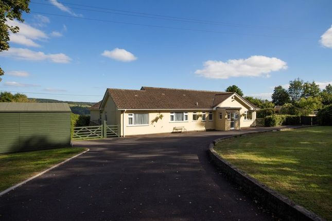 Thumbnail Detached bungalow for sale in Marden Farm, Old Exeter Road, Chudleigh, Newton Abbot