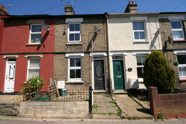 Thumbnail Terraced house for sale in Bergholt Road, Colchester