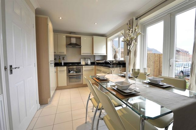 """Thumbnail Terraced house for sale in """"The Souter"""" at Greatham Avenue, Stockton-On-Tees"""