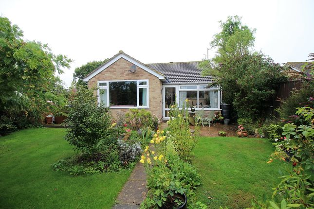 Thumbnail Detached bungalow for sale in Springfield Close, Westham