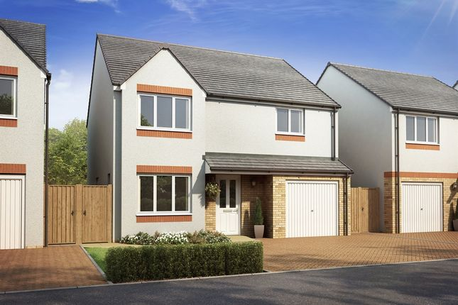 "Thumbnail Detached house for sale in ""The Balerno "" at Lanton Road, Falkirk"