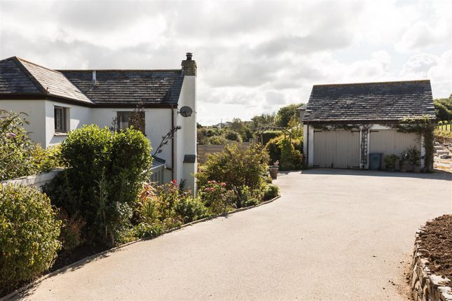 Commercial Property To Let Newquay