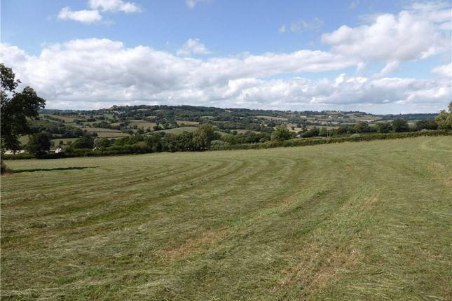 Thumbnail Land for sale in Monkton, Honiton, Devon
