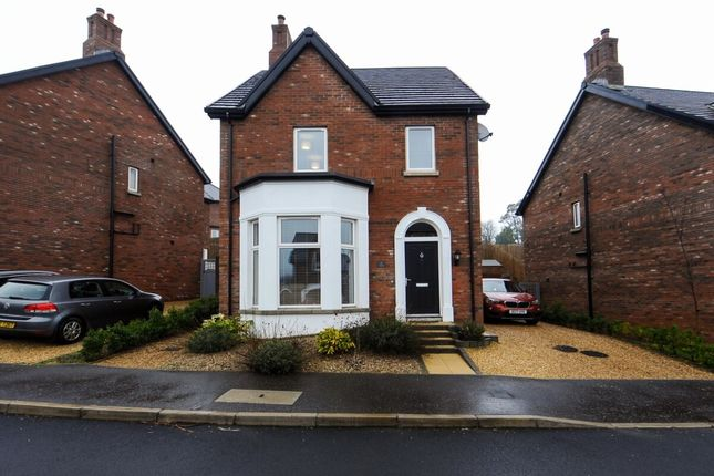 Thumbnail Detached house for sale in Westmount Crescent, Newtownards