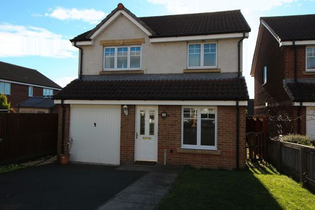 Thumbnail Detached House To Rent In Robert Philp Road Kirkcaldy