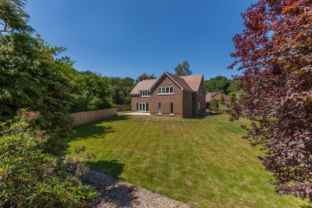 Detached house to rent in Stoke Row Road, Kingwood, Henley-On-Thames