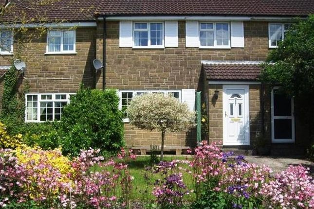 Thumbnail Terraced house to rent in Main Street, Ash, Martock