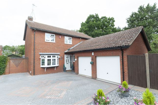 Thumbnail Detached house for sale in The Hollies, Shefford