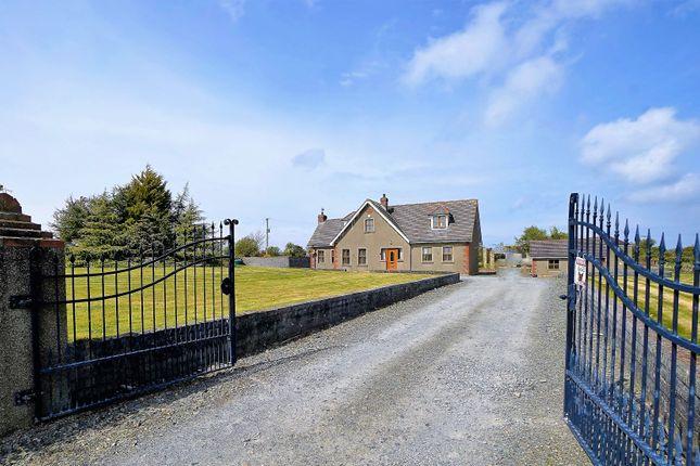 Thumbnail Equestrian property for sale in Ballygelagh Road, Kircubbin