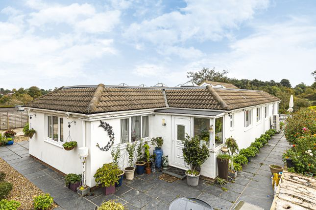 Thumbnail Detached bungalow for sale in Bluebridge Road, Brookmans Park, Hatfield