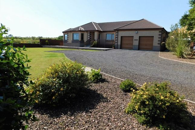 Thumbnail Bungalow for sale in Oldhall Watten, Watten, Wick