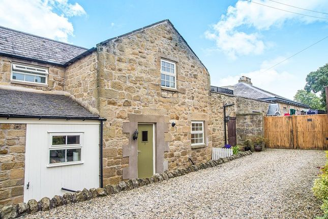 Thumbnail Terraced house to rent in Alnwick