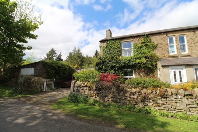 Thumbnail Cottage for sale in New Alston, Hexham