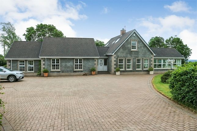 Thumbnail Detached house for sale in Scolboa Meadow, Antrim