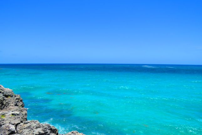 Thumbnail Land for sale in 54 Acres Merricks, Merricks, St. Philip, Barbados