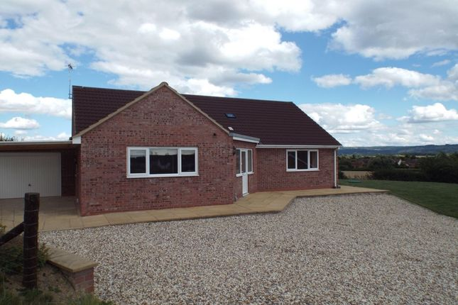 Thumbnail Bungalow to rent in Bridewell Drive, Sedgeberrow, Evesham