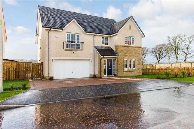Thumbnail Detached house for sale in Kavanagh Crescent, Jackton, Jackton