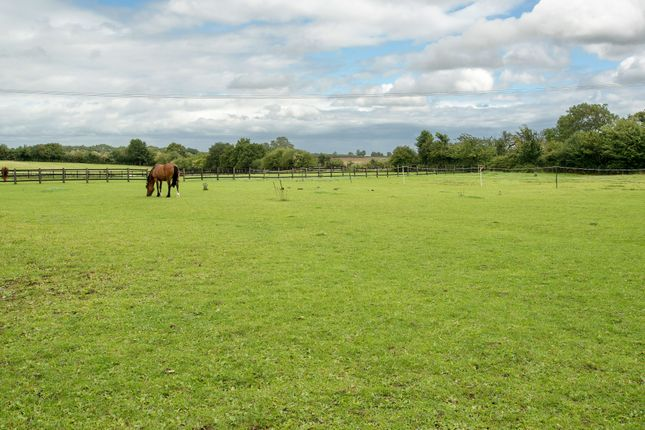 Thumbnail Equestrian property for sale in Moorend Road, Potterspury