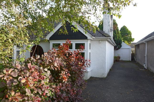 Thumbnail Detached bungalow for sale in Meadow View, Haverfordwest