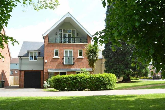 Thumbnail Detached house to rent in Redwood Drive, Epsom