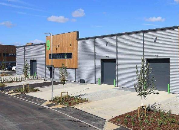 Thumbnail Light industrial to let in Unit 9, Halo Business Park, Cray Avenue, St Mary Cray, Orpington, Kent