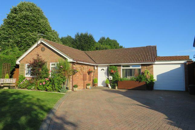 Thumbnail Detached bungalow for sale in The Warren, Holbury, Southampton
