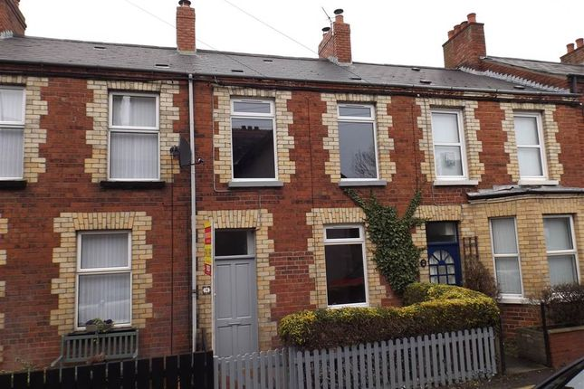 Thumbnail Terraced house to rent in 14, Ean Hill, Holywood