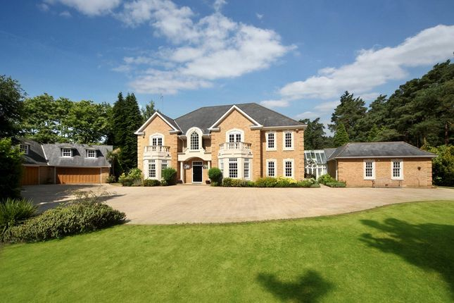 Thumbnail Detached house for sale in Westwood Road, Windlesham, Surrey