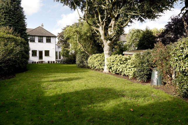 Thumbnail Property to rent in Beresford Avenue, Twickenham