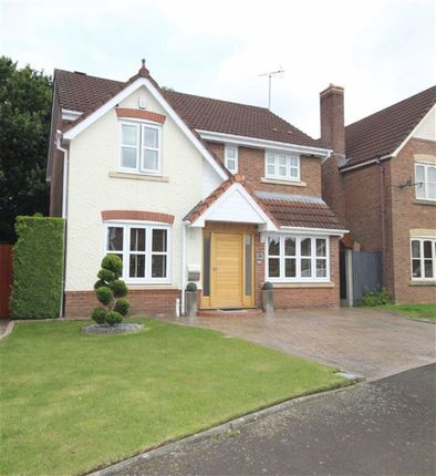 Thumbnail Detached house for sale in Ladyhill View, Worsley, Ellenbrook
