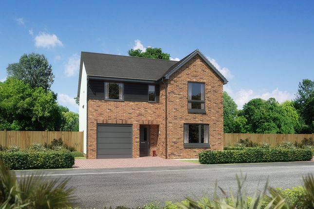"Thumbnail Detached house for sale in ""Glenmore"" at Kingswells, Aberdeen"