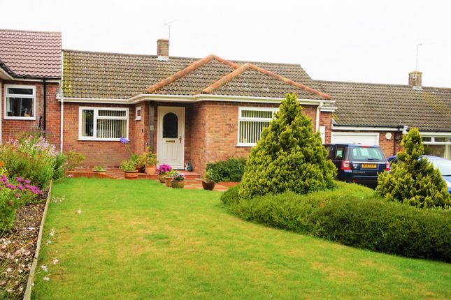 Thumbnail Bungalow for sale in South Acre, South Harting