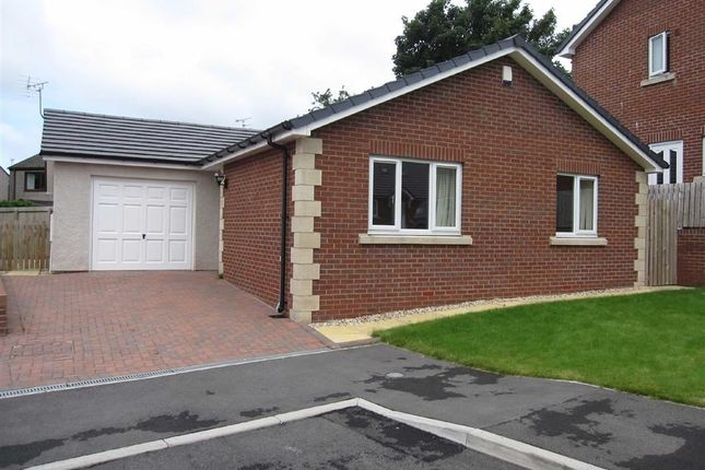 Thumbnail Detached bungalow to rent in The Oaks, High Seaton, Seaton, Workington