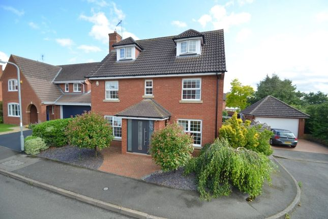 Thumbnail Detached house to rent in Scotney Way, Thrapston, Kettering