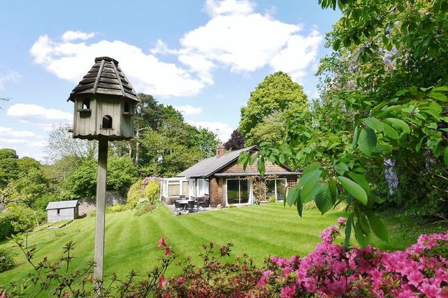 Thumbnail Detached bungalow for sale in Romford Road, Pembury, Tunbridge Wells
