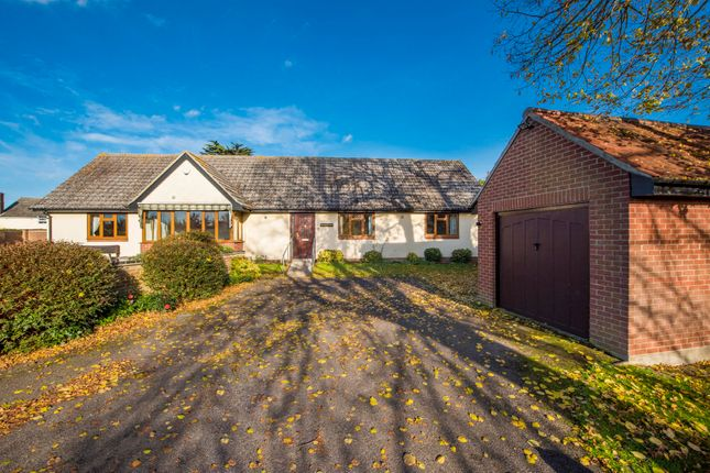 Thumbnail Semi-detached bungalow for sale in Salter Hall Mews, Sudbury