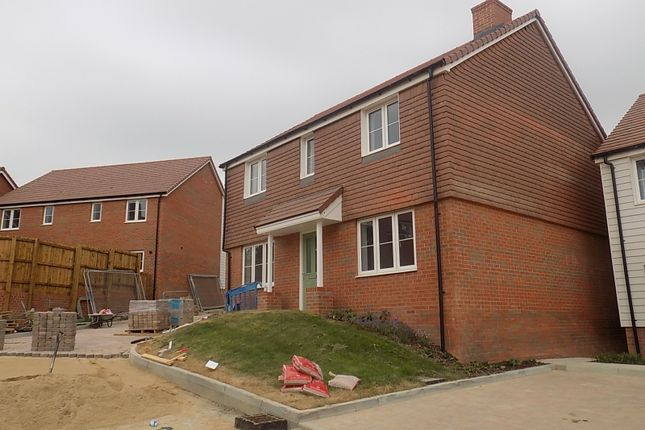 Thumbnail Detached house for sale in Rattle Road, Westham, Pevensey