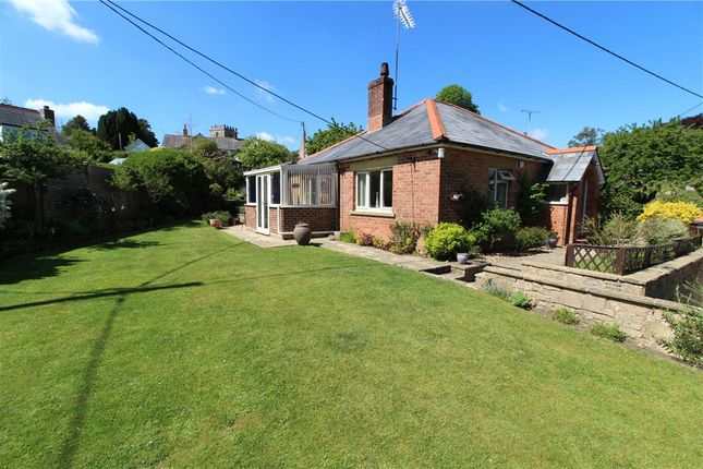 Thumbnail Detached bungalow for sale in Kingcombe Road, Toller Porcorum, Dorchester, Dorset