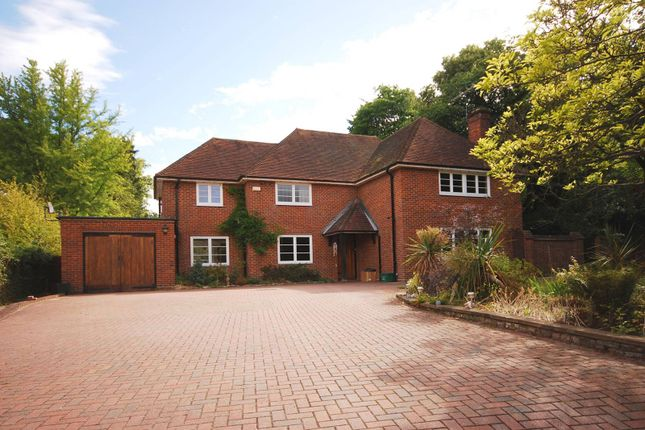 Thumbnail Property to rent in Aldersey Road, Guildford