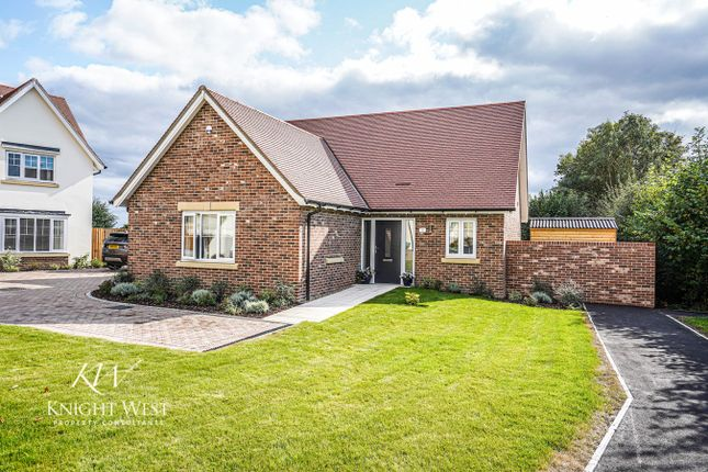 3 bed detached bungalow for sale in Brook Road, Great Tey, Colchester CO6