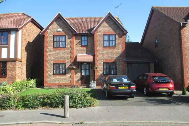 Thumbnail Detached house to rent in Ashmore Gardens, Northfleet, Gravesend