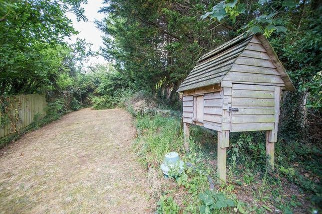 Photo 18 of Westwood, Crediton EX17