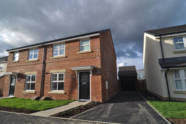 Thumbnail Semi-detached house to rent in Blenkin Way, Durham Gate, Spennymoor