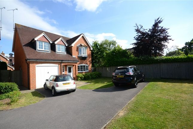 Thumbnail Detached house for sale in The Laurels, Woodley, Reading