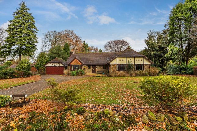 4 bed detached bungalow for sale in Osmunda Bank, Dormans Park, East Grinstead