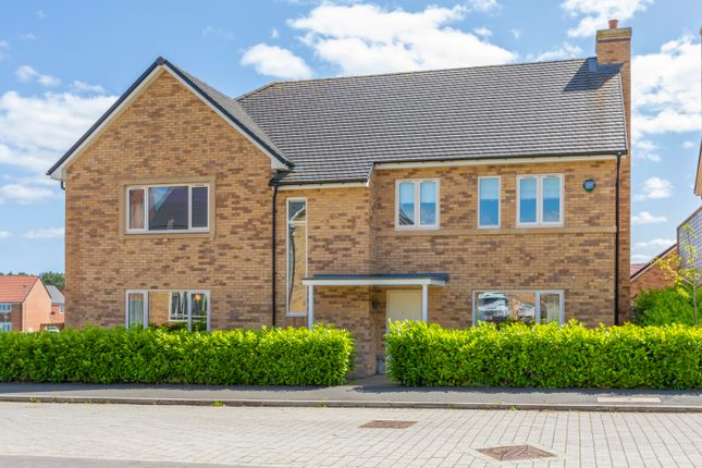 Thumbnail Detached house for sale in Eden, St. Mary Park, Morpeth