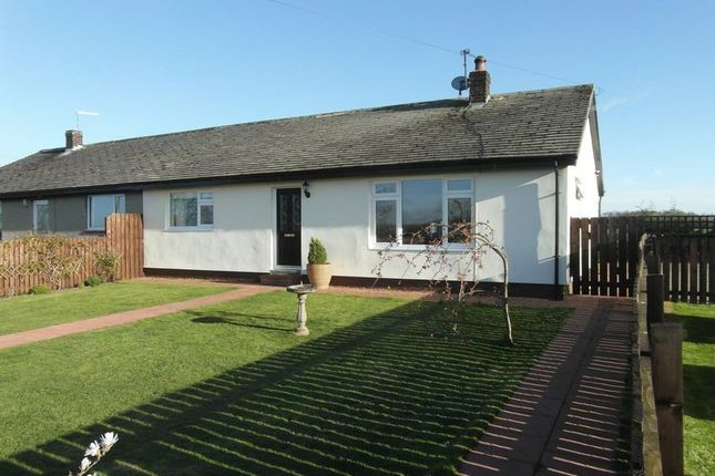 Thumbnail Bungalow for sale in Felton, Morpeth