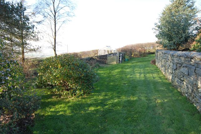 Garden of Low Ghyll, Kirkby In Furness, Cumbria LA17