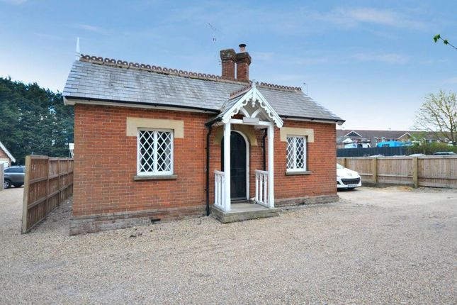 Thumbnail Bungalow to rent in Chelmsford Road, Great Dunmow, Great Dunmow