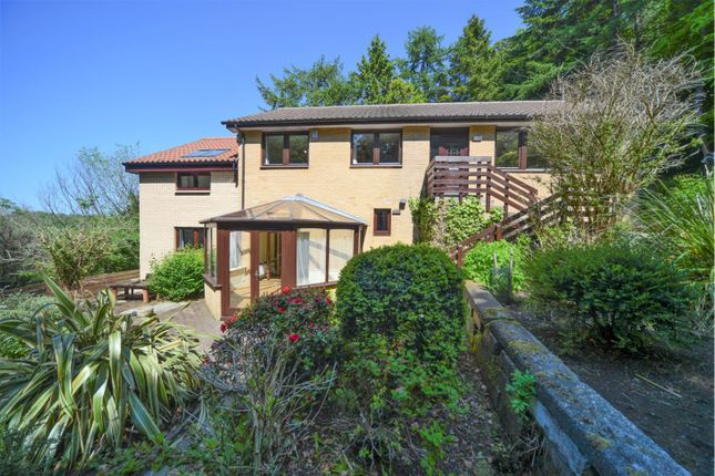 Thumbnail Detached house for sale in Polton Road, Lasswade